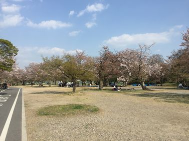 京都八幡木津自転車道 嵐山 起点