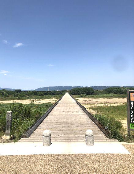 京都府八幡市 流れ橋(上津屋橋)