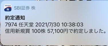 任天堂 株 ナンピン